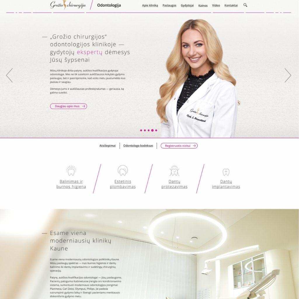 Balti.lt_webdizainas